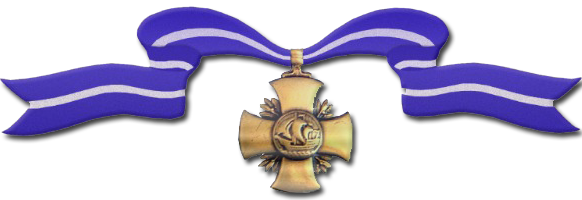 Navy Cross Award
