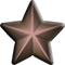 Bronze Service Star